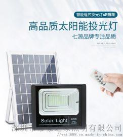 AE照明太阳能投光灯 太阳能庭院灯 新农村太阳能灯 太阳能户外灯