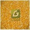 時產500KG鴨飼料雞飼料玉米粉碎機,玉米飼料機