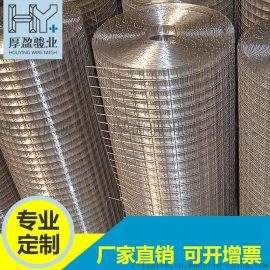 厂家直销电焊网 镀锌电焊网冷镀批荡网 建筑用网片不锈钢电焊网