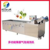 廠家生產果蔬加工設備 商用洗果機 洗魚機