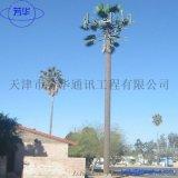 生產廠家專業研發仿生樹電力杆、避雷針鐵塔等鋼金屬結構。