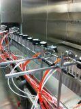 湖南自动化喷漆生产线