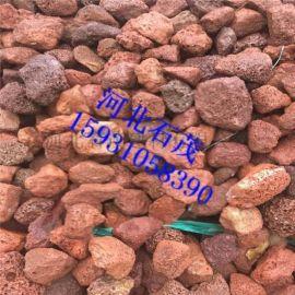 石茂供应火山石 污水处理火山石 多肉植物铺面