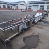 大白菜清洗機 氣泡輸送白菜清洗設備 淨菜加工生產線