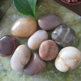 保定黑色雨花石厂家 本格2-3公分黑色雨花石价格