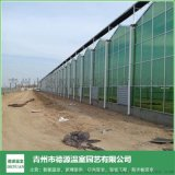 生態玻璃連棟溫室控制系統-青州德源