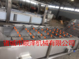 安徽白芍清洗机 白芍清洗设备 白芍加工设备