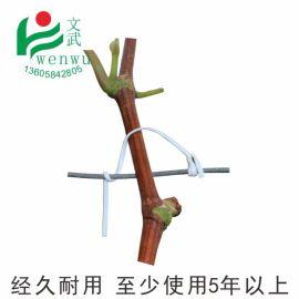 文武包裝   代園林扎絲綁線 綁枝塑鐵絲扎藤蔓枝條露天葡萄絲帶