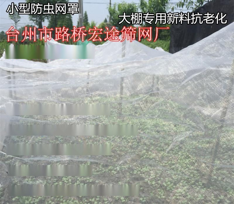 供應土豆防蟲網, 馬鈴薯防蟲網, 馬鈴薯脫毒防蟲網, 農用防蟲網