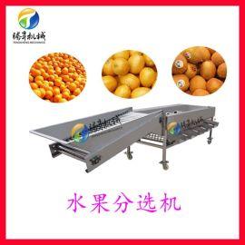 多功能果蔬分選分級機  清洗機滾筒水果分級機