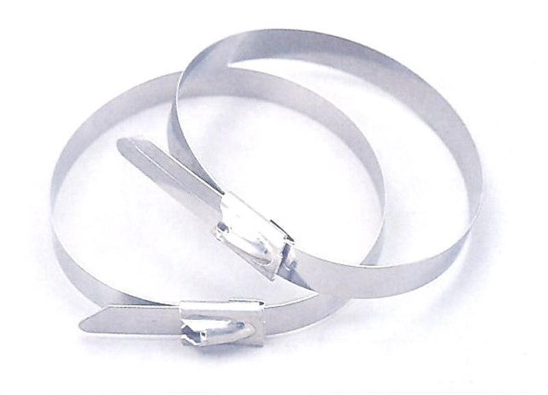厂家供应**不锈钢带扣 不锈钢带卡扣 不锈钢扎带 不锈钢扎扣