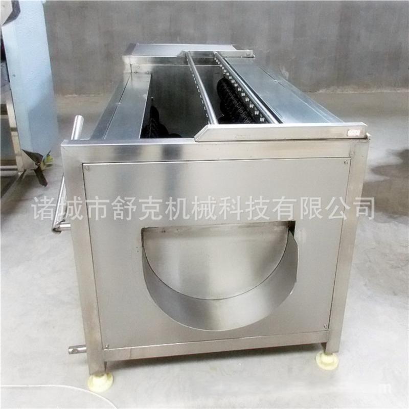 爆款毛輥清洗機 平行多毛刷定製款土豆清洗機 小型淨菜加工機器