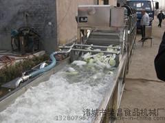 果蔬清洗机 西兰花清洗机 鼓泡式榨菜清洗机 果蔬清洗加工设备