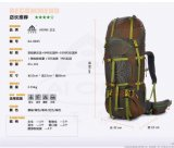 廣州艾王AIONE戶外揹包專業登山包超大容量旅行揹包65+10L
