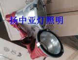 CXTG71投光灯、GXTG71投光灯