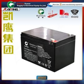 12V10AH铅酸蓄电池免维护UPS蓄电池12v音响电池厂家直销