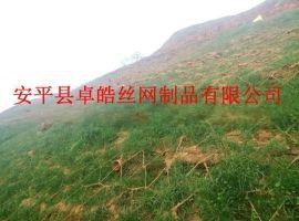 岩石边坡绿化防护网,TBS植被绿化网,TBS植被护坡网,TBS绿化网