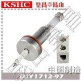 高纯氧化铝陶瓷水位电极DJY1712-97锅炉汽包水位电极