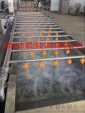 肉类解冻机 水产专用连续输送气泡翻浪解冻机生产厂家