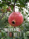 新鮮水果 富民軟籽石榴薄皮多汁特產