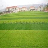 河北永恒庭院人造草坪