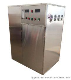 500g/h蜂窝式水冷臭氧发生器