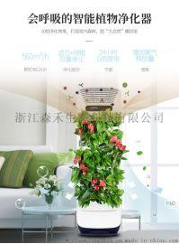 森境智能植物空气净化器