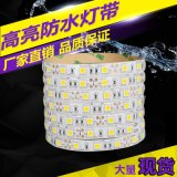 【逸朗特】厂家批发防水软灯条低压灯带12v 5050灯带led 大量现货
