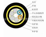 太平洋品牌ADSS-24B1-100米档距 pe AT PE 抗电腐蚀电力光缆 厂家