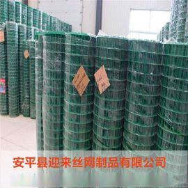 养殖荷兰网 ,浸塑围栏网,镀锌荷兰网