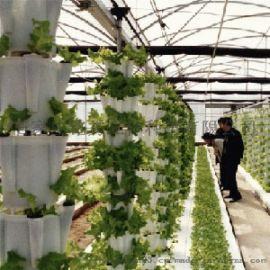 无土栽培技术培训