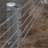 广西柔性防撞钢索护栏安装方式,A级钢索护栏加工厂家