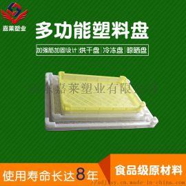 塑料冷冻盘密眼加厚食品级单冻器