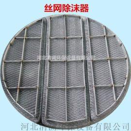 除沫器 丝网除沫器 PP/304不锈钢丝网除沫器