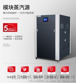 节能环保蒸汽锅炉 沈阳凯大5模块蒸汽源机