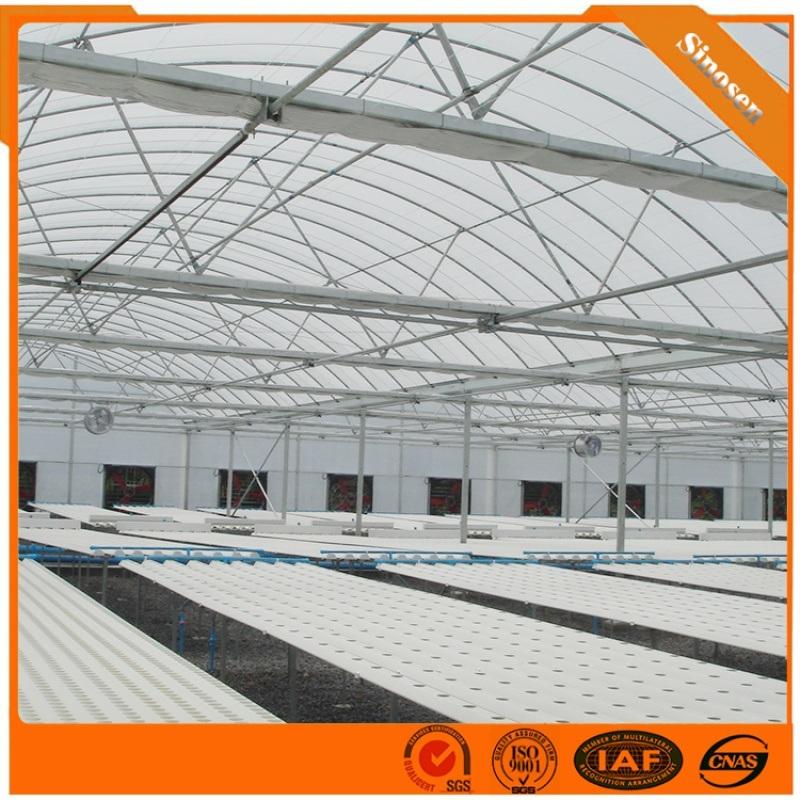 薄膜温室大棚 薄膜温室厂家 薄膜连栋 薄膜温室价格