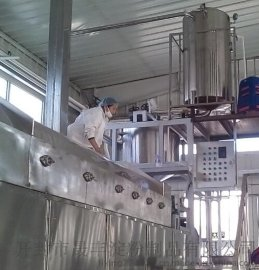 红薯粉条机生产线SF