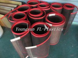 生产销售uv光固机特氟龙网格输送带