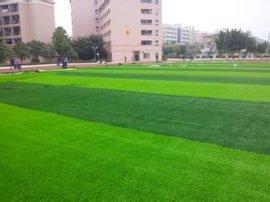 广西名扬钦州学院足球场人造草皮设计施工。