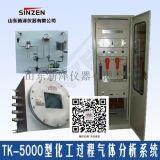 厂家直销TK-5000型合成氨尿素气体分析系统
