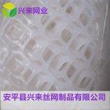 全新料塑料网 塑料拉伸网 纯料养殖网