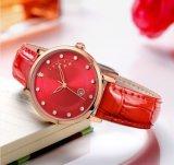 韩版镶钻日历女表潮流女士手表学生手表防水石英女腕表