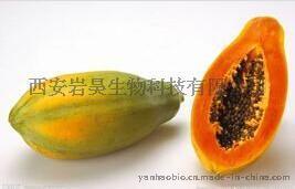 岩昊生物直供木瓜提取物