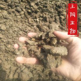 厂家出售石家庄干牛粪发酵干牛粪石家庄生物有机肥厂