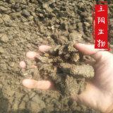 廠家**石家莊幹牛糞發酵幹牛糞石家莊生物有機肥廠