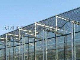 玻璃温室/温室大棚厂家/玻璃温室大棚造价