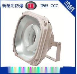 供应SBD1130防爆免维护节能泛光灯 厂家直销