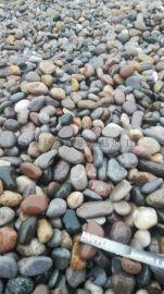石家庄直销顺永5-8公分变压器鹅卵石