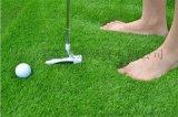 体育场跑道白线草坪定制斑马线跑道免填充草坪足球场仿真草坪绿