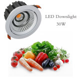 LED生鲜筒灯COB光源30W超市食品照明灯